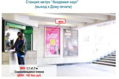 "Станция метро ""Академия наук"" ( выход к Дому печати)"
