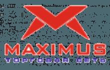 Торговый центр Максимус
